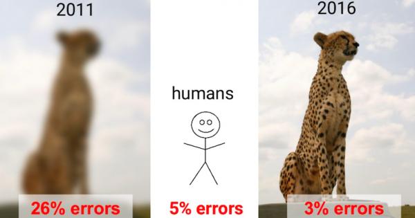 Computer-Vision-vs-Human-Vision
